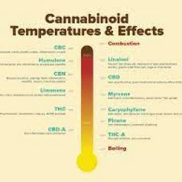 best temp to vape weed