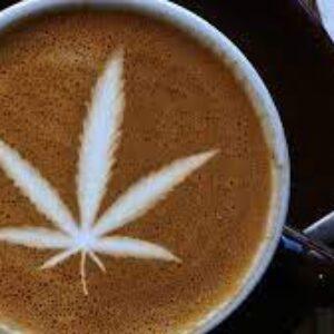 kief coffee