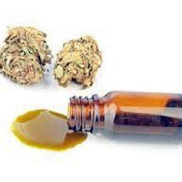 bho cannabis oil