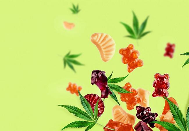 sugar free edibles canada